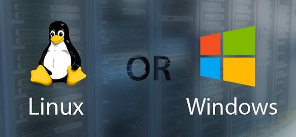 Linux Hosting Or Windows Hosting
